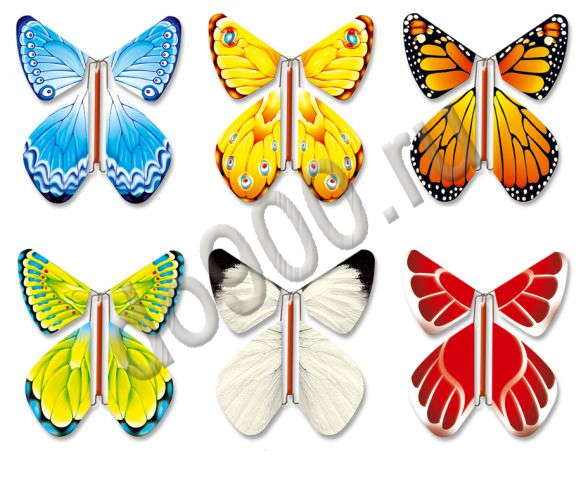 Бабочка вылетают из открытки, смешная картинка приколы