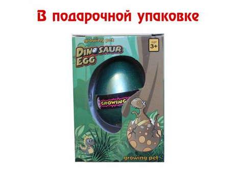 Яйцо растущее в воде